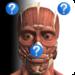 Anatomy Quiz Free APK