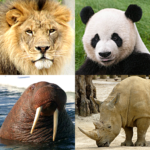 Animals Quiz – Learn All Mammals and Dinosaurs! APK