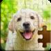 Jigsaw Puzzle – Classic Puzzle Games APK